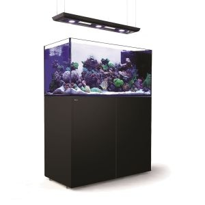 Red Sea Reefer Peninsula Deluxe P500 Aquarium