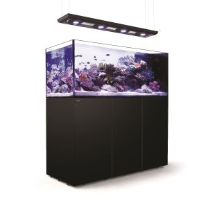 Red Sea Reefer Peninsula Deluxe P650 Aquarium