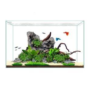 Waterbox Clear Mini 10