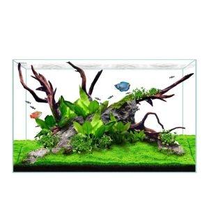 Waterbox Clear Mini 16