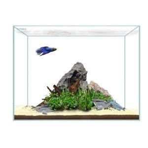 Waterbox Clear Mini 6