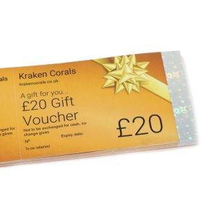 Kraken Gift Voucher £20
