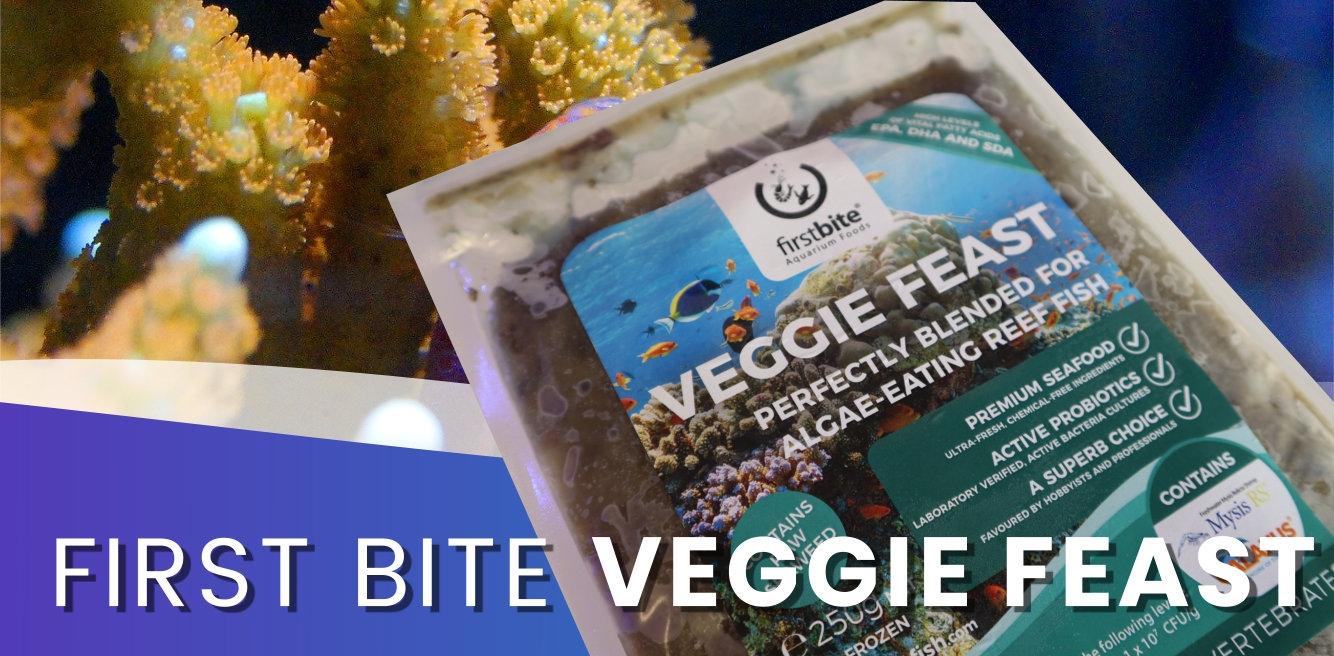 New Frozen Firstbite Veggie Feast